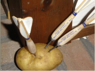 Widdy Darts in Potatoe
